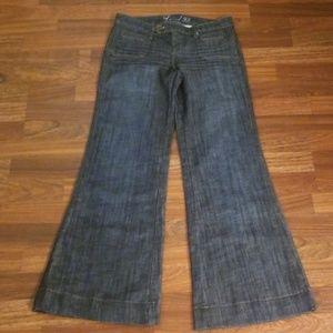 Anthropologie Level 99 Wide Leg Demin Trousers